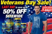 MHP - Email Blast - Veterans Day